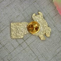 Soft Enamel Pins for ASI Csudh
