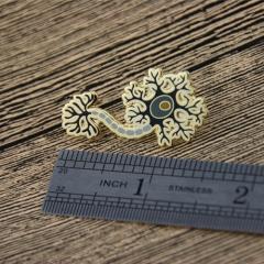 Corals Lapel Pins
