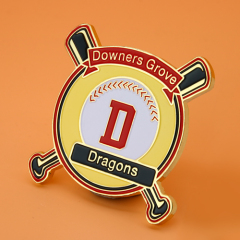 Downers Grove Dragons Baseball Pins