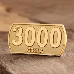 3000 custom lapel pins