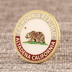 Regional tourist custom pins
