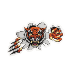Anger Tiger Custom Stickers