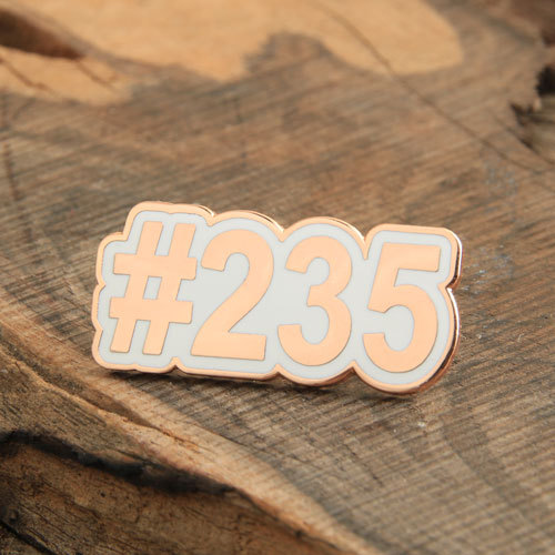 Number Plate Pins